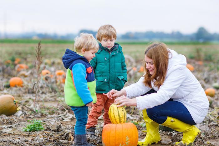 family_pumpkinpatch