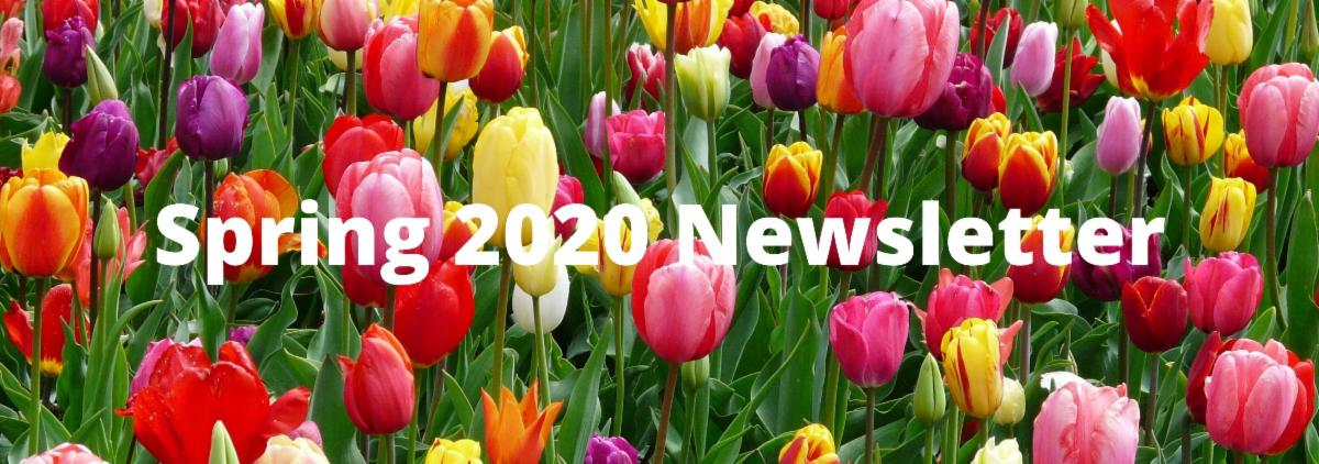 NDF Spring Newsletter 2020