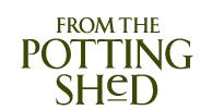 Logo - transparent BG