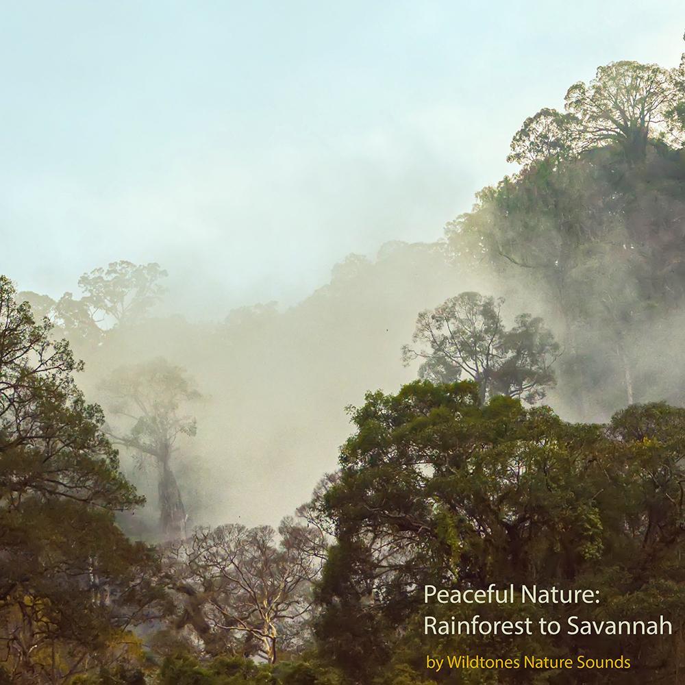 peaceful_nature_rainforests to Savannah_album