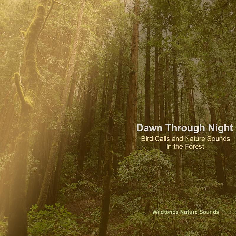 Dawn_thru_Night_Wildtones_Nature_Sounds