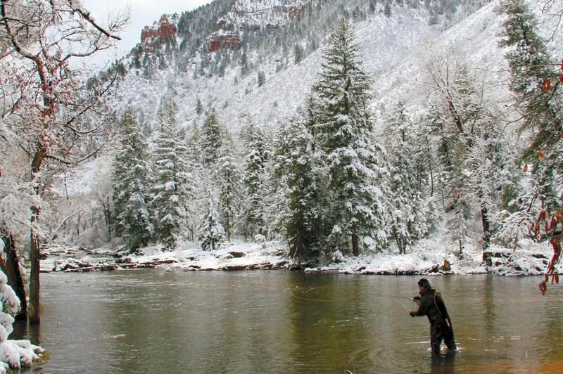 FlyFishing  Winter