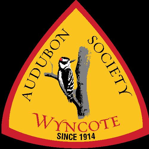 Wyncote Audubon logo
