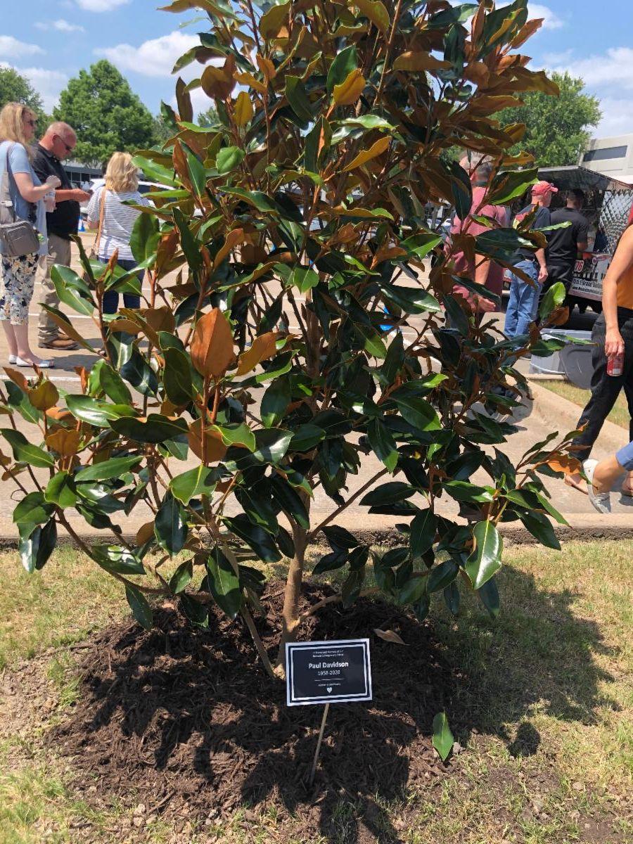 Fortress Solutions Paul Memorial Tree