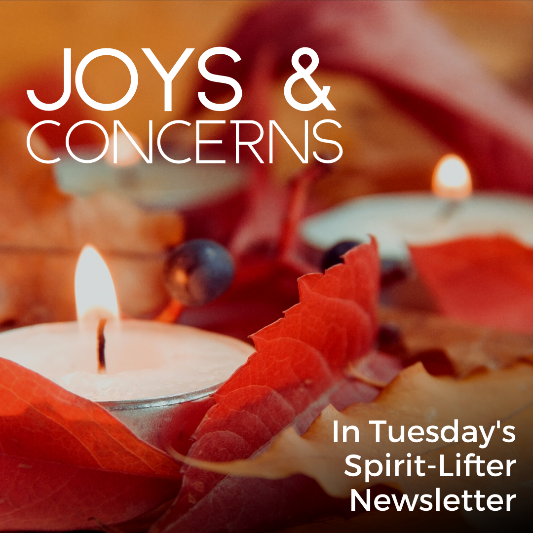 Joy and Concerns fall bug.png