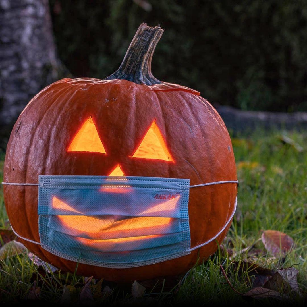 21.10.31 Halloween bug.jpg