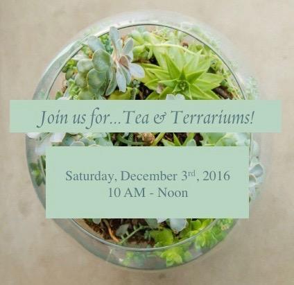 tea and terrariums