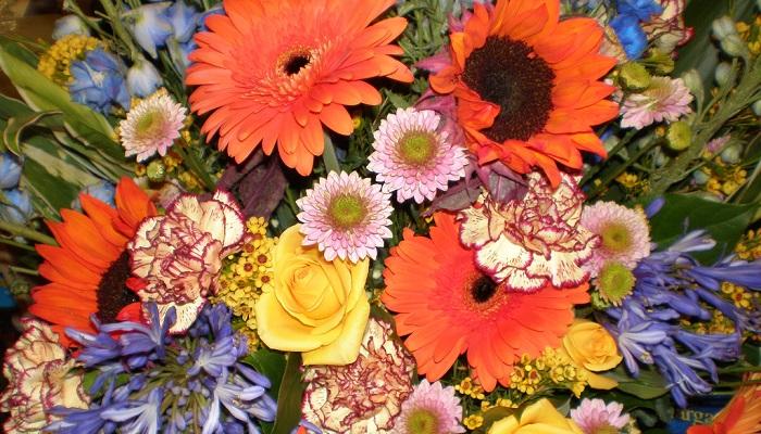 mixed_flowers.jpg