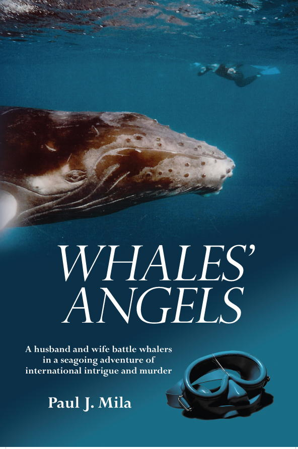 WHALES' ANGELS Cover