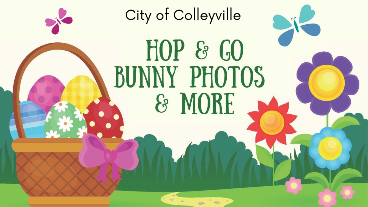 hop and go bunny photos