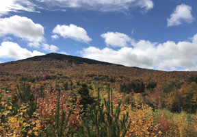 Photo of Mt. Monadnock courtesy image