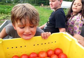 Photo of kids and tomatoes by Katrina Farmer