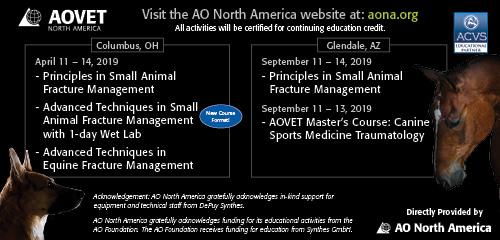 AO North America banner ad