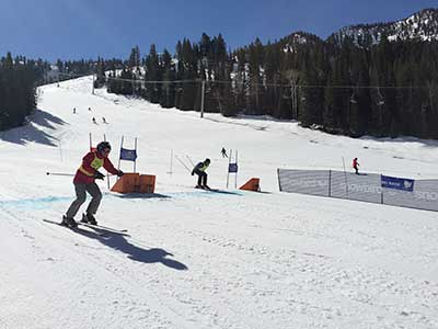Acetabular Cup ski race