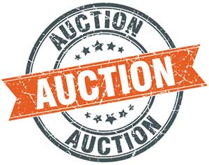 Auction graphic