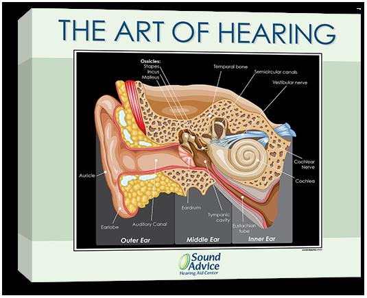 Art of Hearing 2420