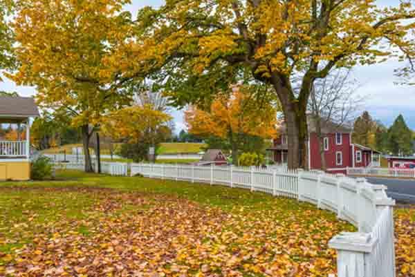 autumn-trees-fence2.jpg