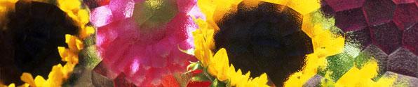 glassy-sunflowers-bnr.jpg