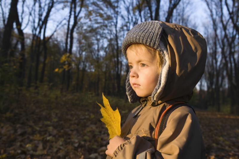 young_boy_with_leaf_dark.jpg