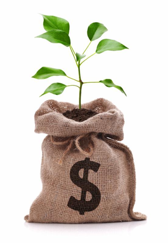 money_bag_tree.jpg