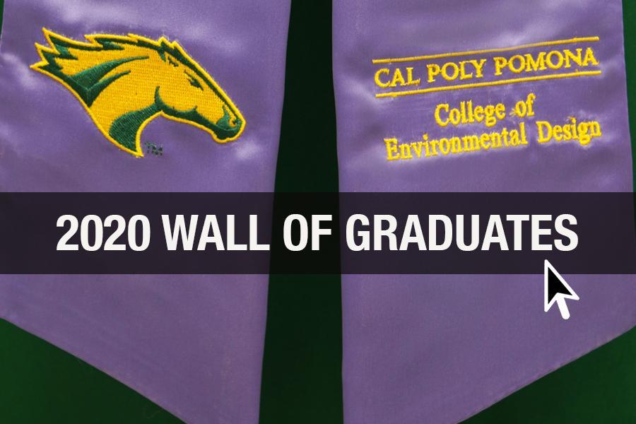 2020 wall of grads