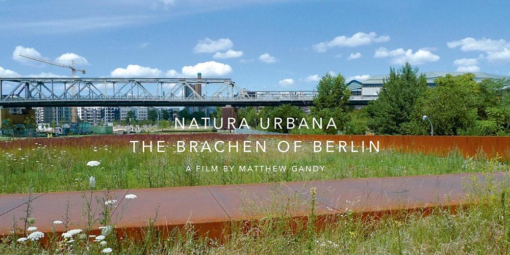 free film screening natura urbana
