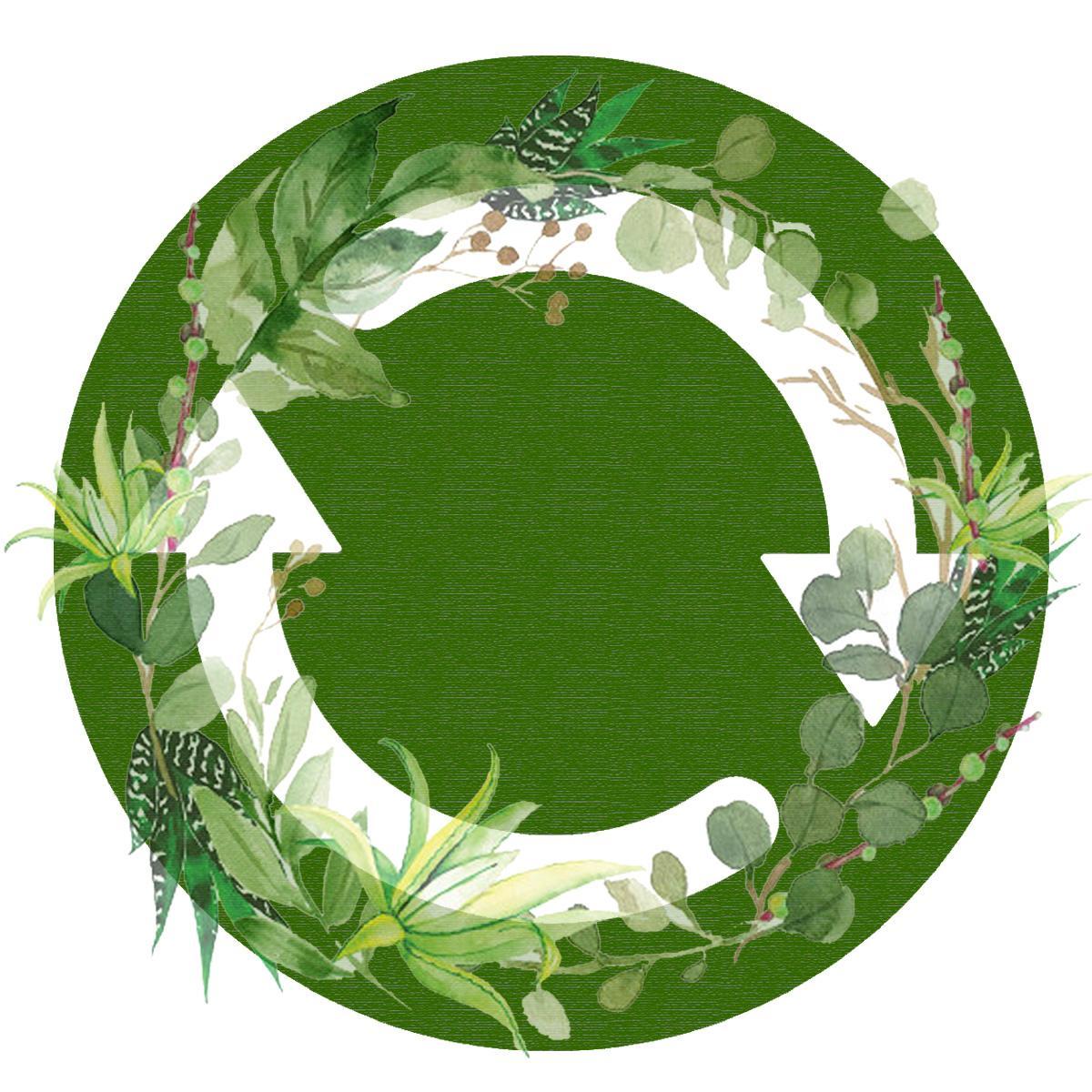 update icon green succulent wreath