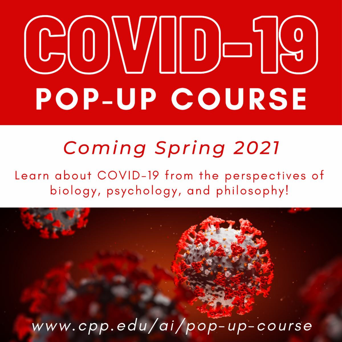 covi19 popup course for spring 2021