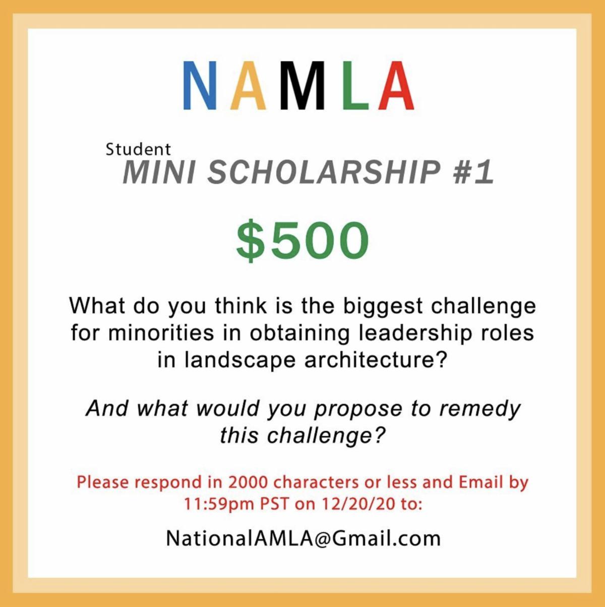 namla mini scholarship deadline december 20 2020