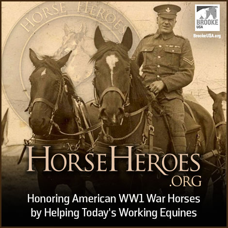 Horse Heroes Commemorate World War One Centennial