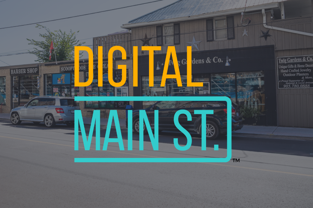 Georgina businesses pivot online during COVID-19 with Digital Main Street program.