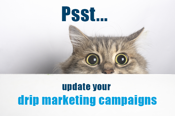 psst...update your drip marketing campaigns (cat peeking over counter)