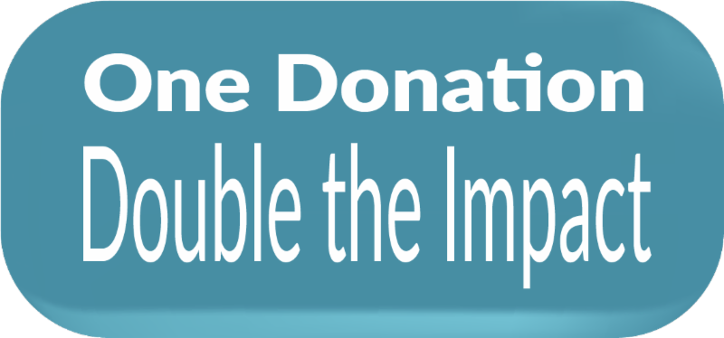 One Donation_ double the impact