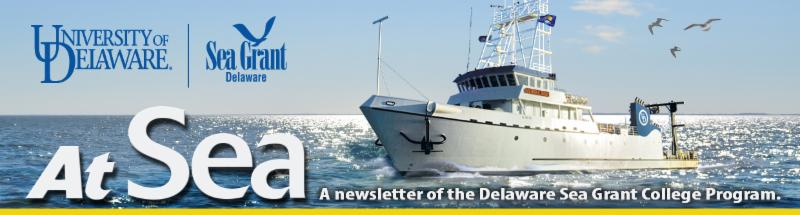 At Sea Newsletter