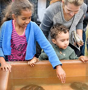 Youngsters visiting marine critters at Coast Day.