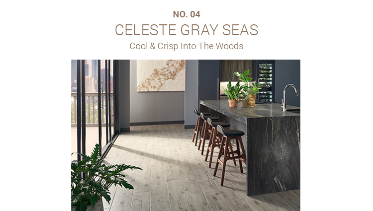 Celeste Gray Seas