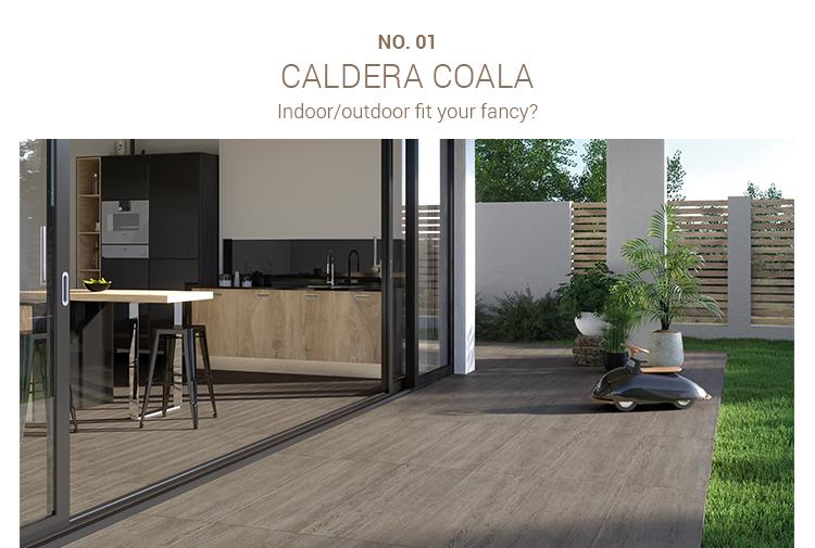 Caldera Coala