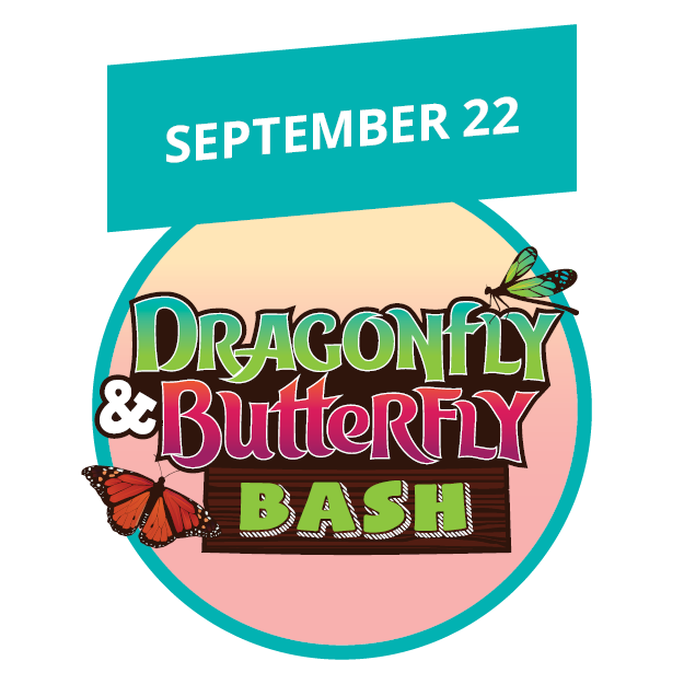 Dragonfly and Butterfly Bash