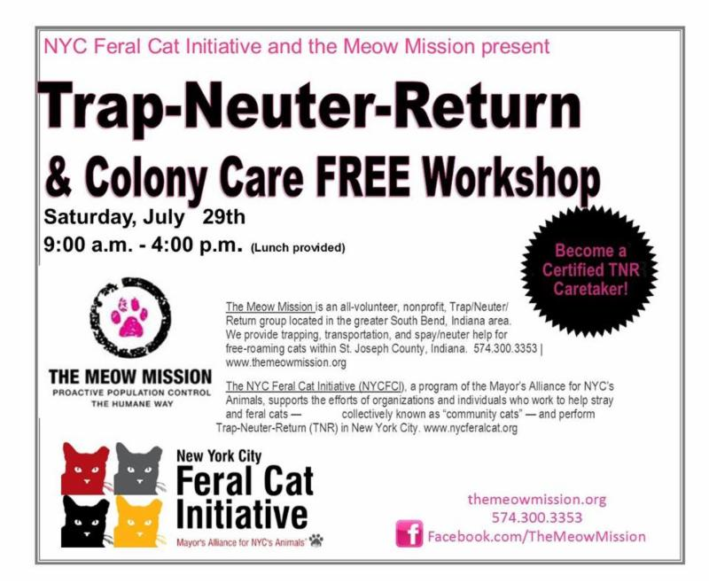 Meow Mission TNR