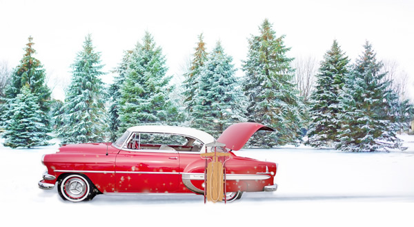 Cars With Those Spiffy Snow Hats As >> New Products December Specials Tremec 2018 Price Increase And More