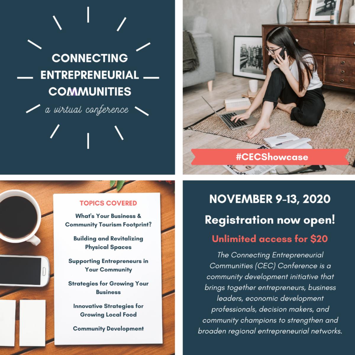 Entrepreneur conference Nov 2020