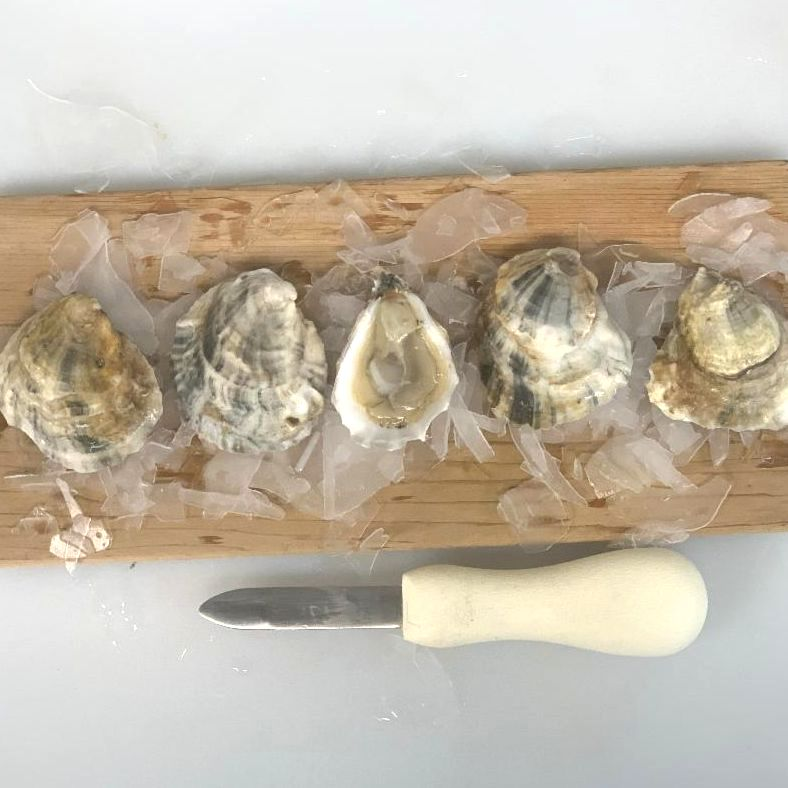 Oysters_ Boomamoto _1_.JPG