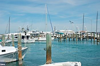 Key West Historic Seaport Garners The Meritorious Achievement Award For Organizational During 40th Annual Florida Trust 2018