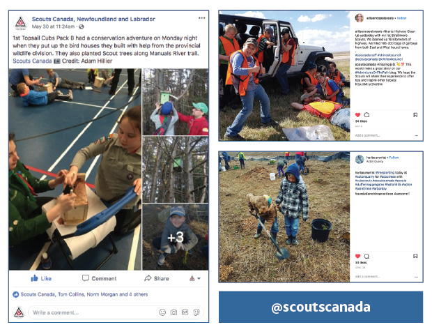 Scouts EnvironMentality