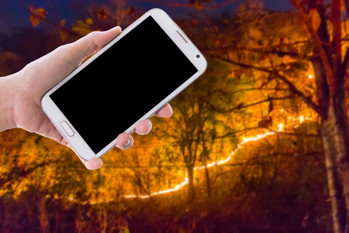 Girl use mobile phone_ image of forest fire  at night as background.