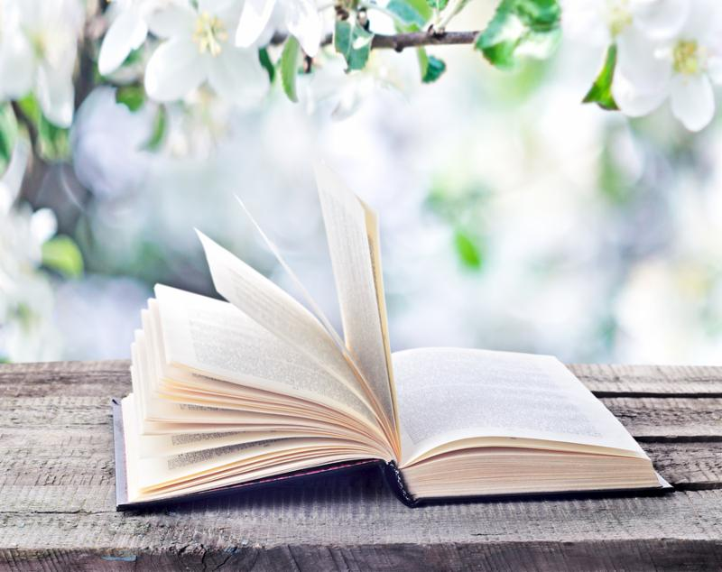 Open book on wooden table outdoors on natural spring or summertime background. Return to spring or summer time. Invitation to study literatures close up