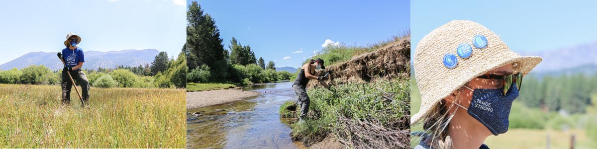 Tahoe Forest Stewardship Day - Summer 2020