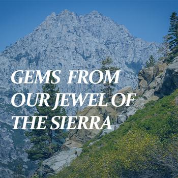 Gems from Our Jewel of the Sierra