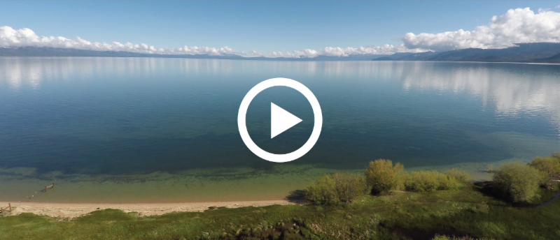Watch now: How does Lake Tahoe get its water?