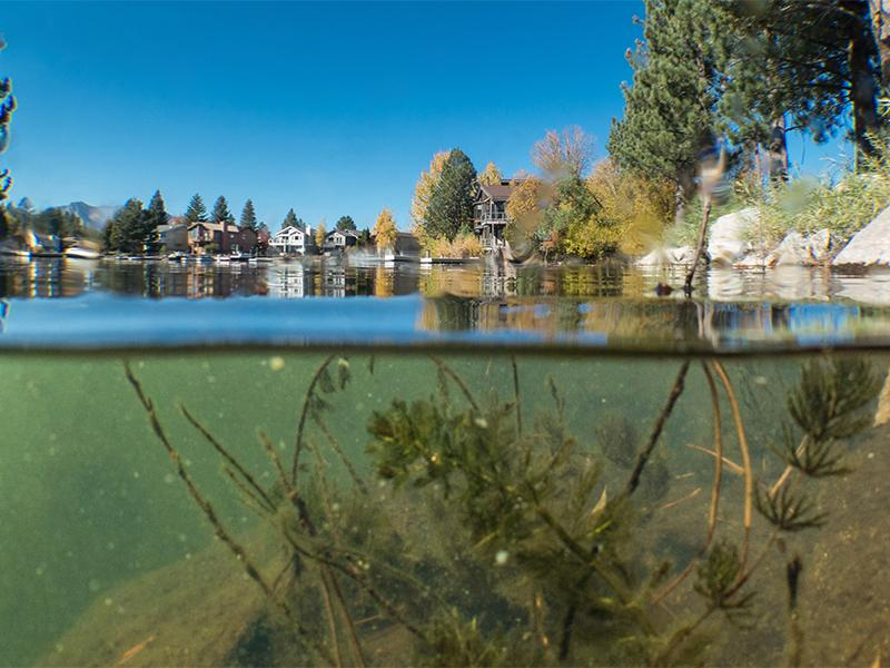 Action Needed to Protect Lake Tahoe